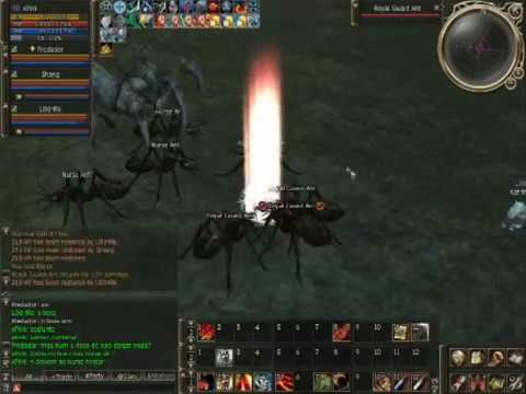 how to kill queen ant lineage 2