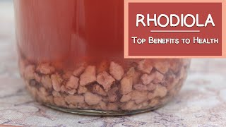 Rhodiola Root, A Top Tonic Herb for Stress and Anxiety