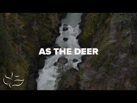 as-the-deer-|-lyric-video