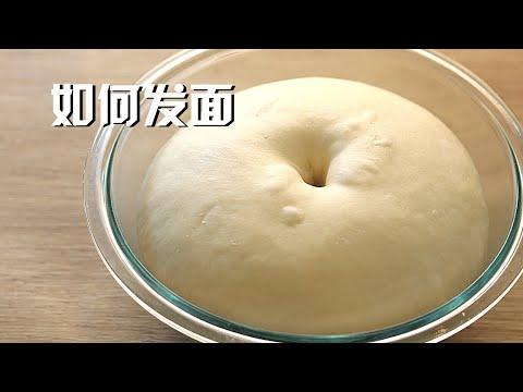 如何发面 超详细教程教你如何成功发面 看完就知道为什么你总发面失败了 How to make a fermented dough