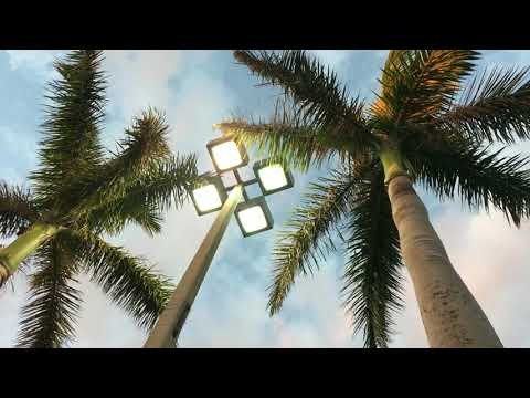 252. Fort Lauderdale- наконец-то я в Америке!