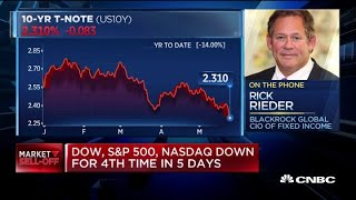 I don't see a recession, I see a moderating economy: BlackRock Global CIO
