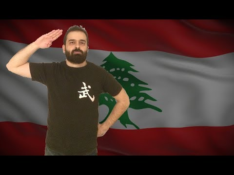 Should The Lebanese Government Support Lebanese Video Game Creators
