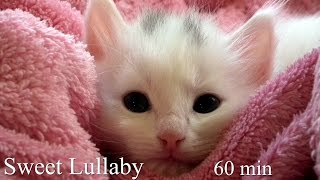 Sweet Lullaby - Berceuse - Chopin Wiosna (60 minutes)