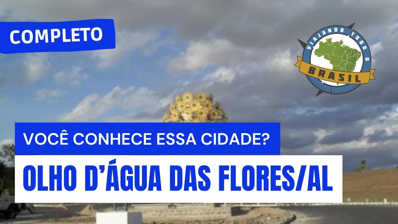 Olho d'Água das Flores Alagoas fonte: i.ytimg.com