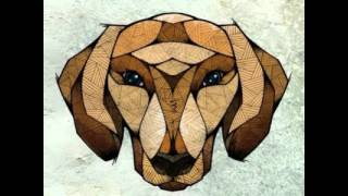 Dachshund - Kling Klong Mix