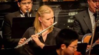 Brahms Symphony No. 1 in C Minor, op. 68, IV. Adagio (Excerpt)