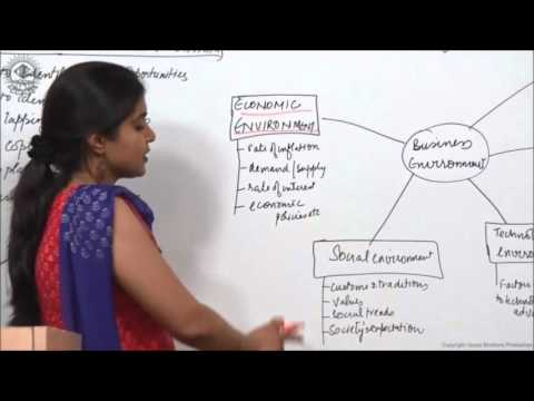 Dimension of Business enviroment Class XII Bussiness Studies by Ruby Singh