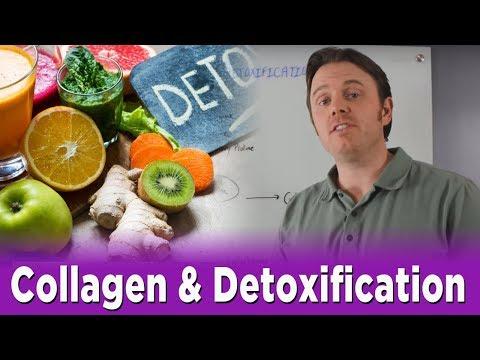 Collagen & Detoxification