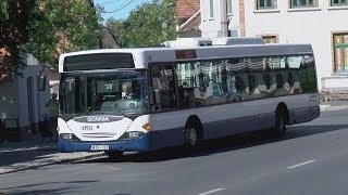 FINA-Balatonfüred: Korszerűbb buszok járnak Füred utcáin a vizes vb idején