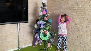 クリスマスツリーを出す