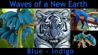 Exciting blue/indigo wave... Is it indicative of the New Earth bein...