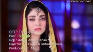 Tere Liye OST TV One  Drama - Nuray Sattar & Sadiq Fakeer - Full Official Song HD