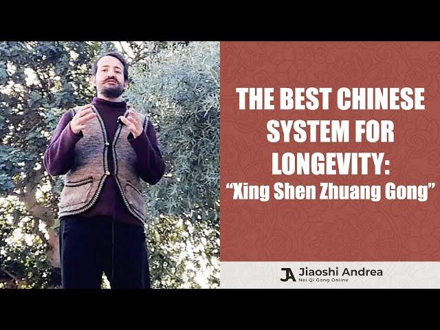 "The Best Chinese Longevity Exercise: ""Xing Shen Zhuang Gong"""