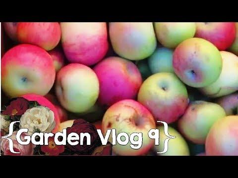 Finishing Up the Gardening Season ║ Garden Vlog Ep. 9 │ Large Family Vlog
