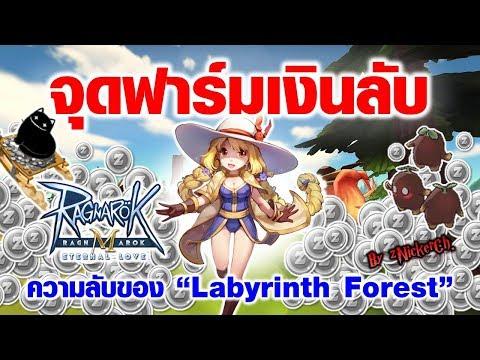 [ROM] EP.03 จุดฟาร์มเงินลับ! ป่าวงกต Labyrinth Forest