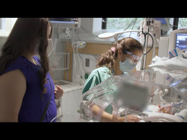 The Neonatal-Perinatal Fellowship at Mount Sinai