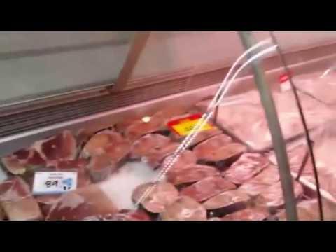 Rat was found in Keels super marine drive