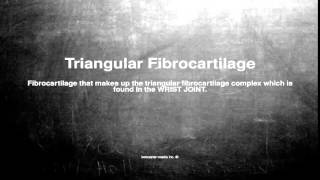 Medical vocabulary: What does Triangular Fibrocartilage mean