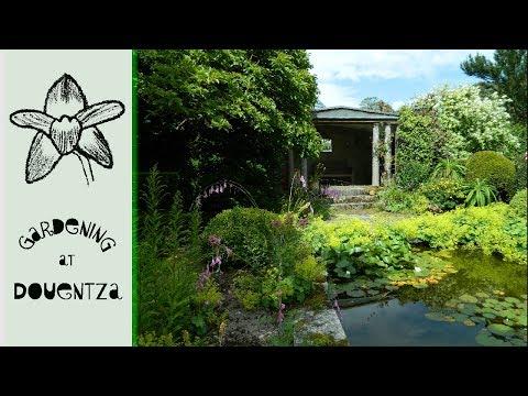 Kilmokea Gardens, Wexford, Ireland