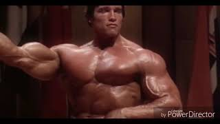 Arnold Schwarzenegger Bodybuilding Training