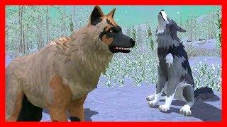 СИМУЛЯТОР ВОЛКА #2 ВОЛЧИЦА ЗАБЕРЕМЕНЕЛА Жизни Зверей WildCraft про котят и собак от ДЕТСКИЕ ИГРЫ