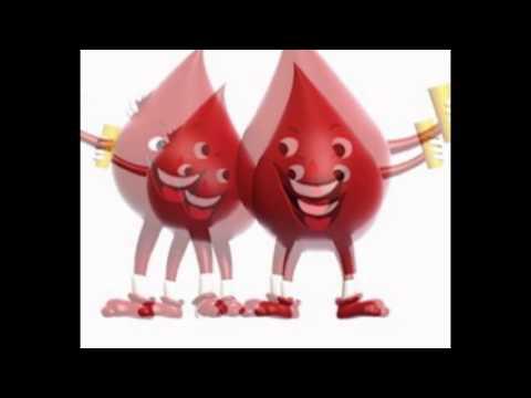 Pengertian Darah