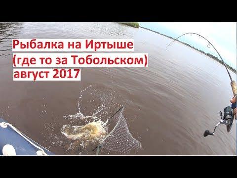 Рыбалка на Иртыше (где то за Тобольском) / август 2017