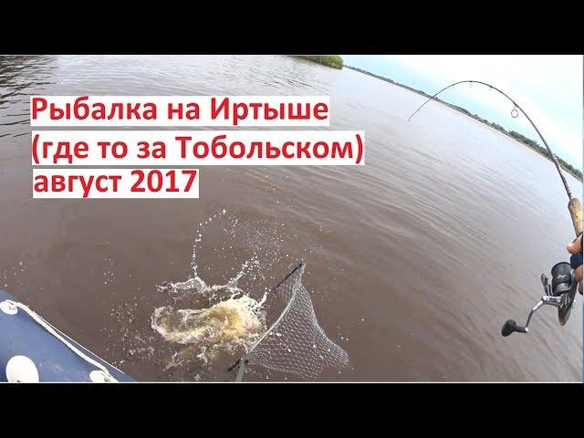 Рыбалка в тобольске на иртыше