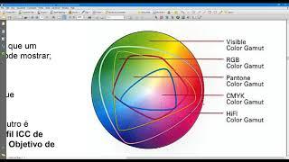 Gerenciamento Cores Puras/ Compostas e ajuste de Intensidade - Flexi 19