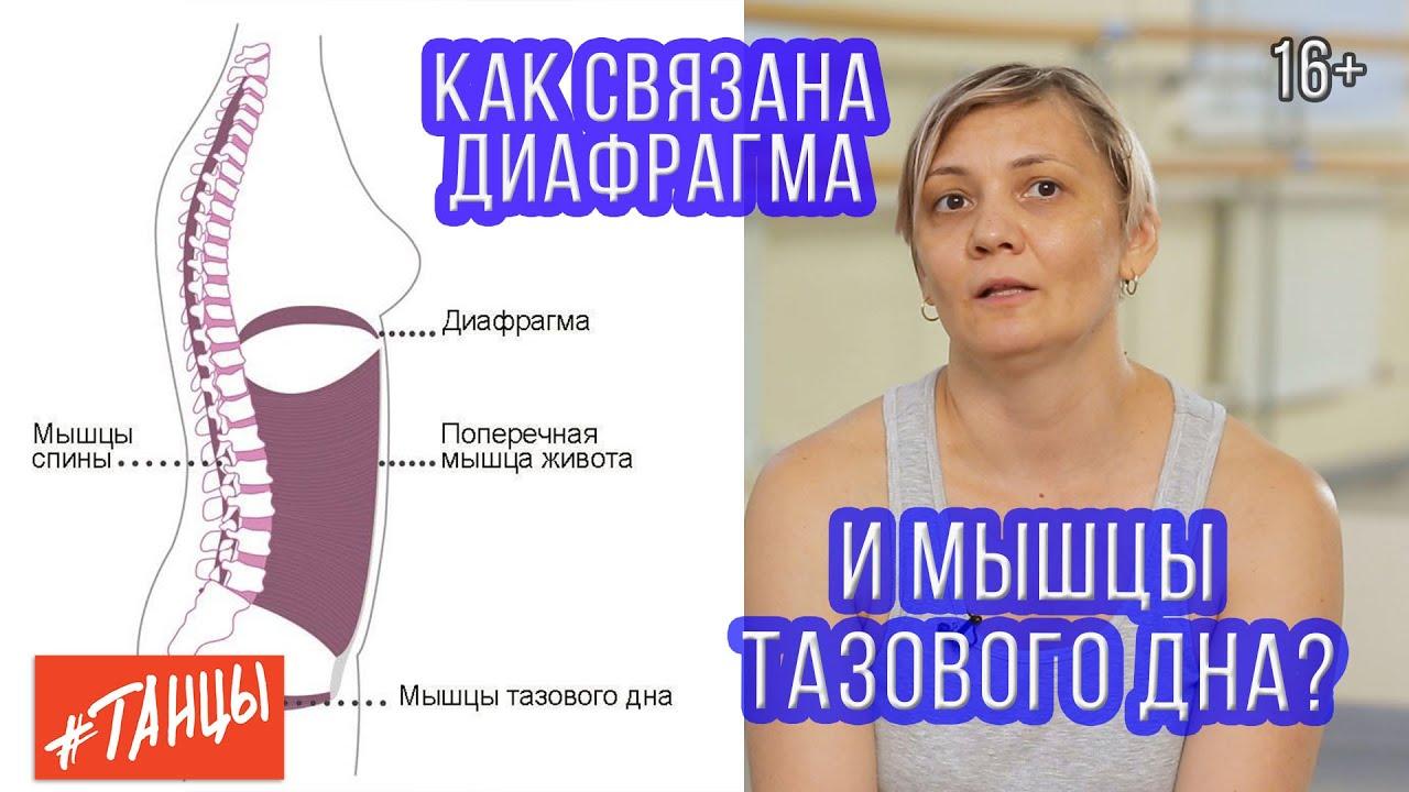 Как связана диафрагма и мышцы тазового дна. Разбираемся с Ксенией Корнейчук