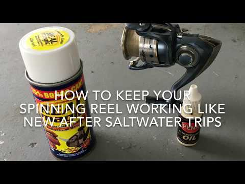 How To Maintain Your Spinning Reel After Fishing Saltwater