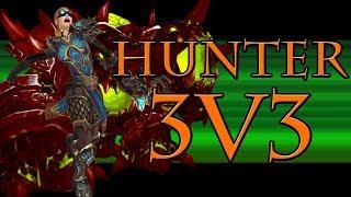 2800+ Marksmanship Hunter 3v3 Arena #12