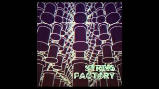 Stroon & Fallgrapp - X-Type