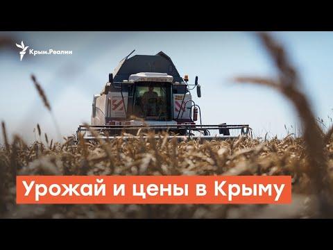 Урожай и цены в Крыму | Дневное ток-шоу