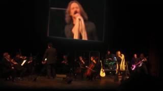 Kashmir Live (Led Zeppelin Tribute Band NYC) LED BLIMPIE