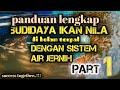 Budidaya Ikan Nila Air Jernih Di Kolam Terpal Persegi Tanpa Ribet Part   Mp3 - Mp4 Download