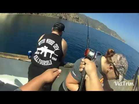 Catalina island fishing 2016 bonito on the chew
