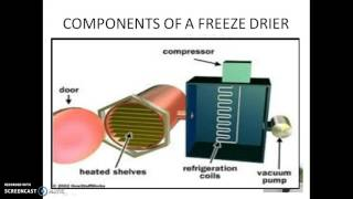 FREEZE DRYING PRESENTATION