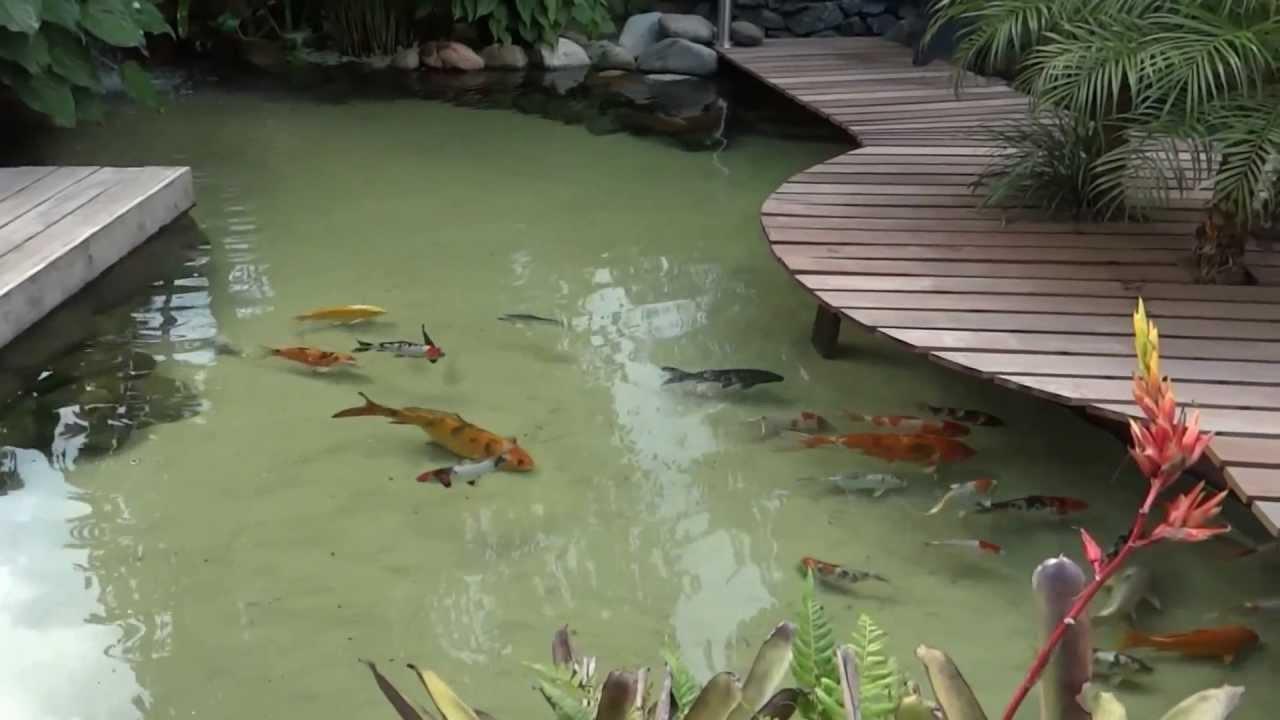 L em casa vers o 2 youtube for Como construir un lago artificial