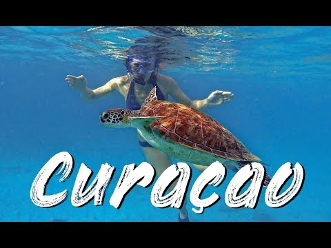 Curaçao Trip - Snorkeling with Turtles - 4k60