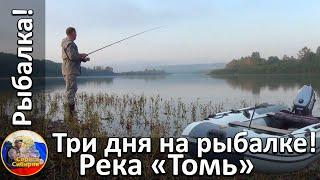 Три дня на рыбалке Река Томь Щука окунь посиделки у костра