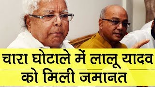 Fodder scam: Jharkhand HC grants bail to Lalu Prasad Yadav in Deoghar treasury case