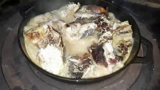 Цыплёнок тапака, в сметано-чесночном соусе. Грузинская кухня.