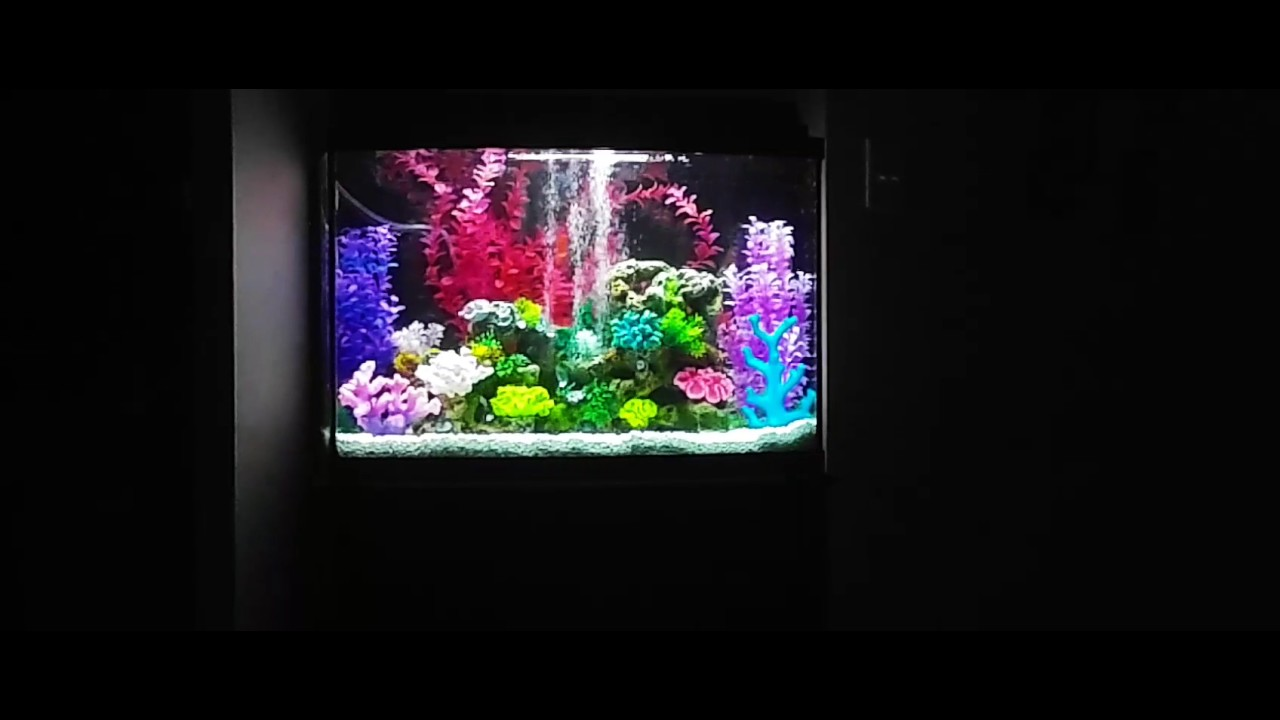 Aqueon 36 gallon bow front aquarium ensemble 1000 for 38 gallon fish tank