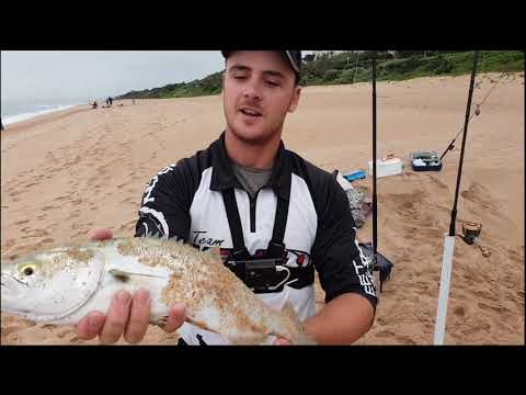 SHAD FISHING UMHLANGA