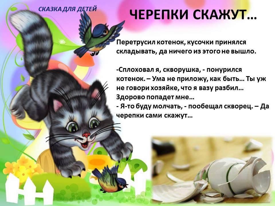 Скачать игру про котенка