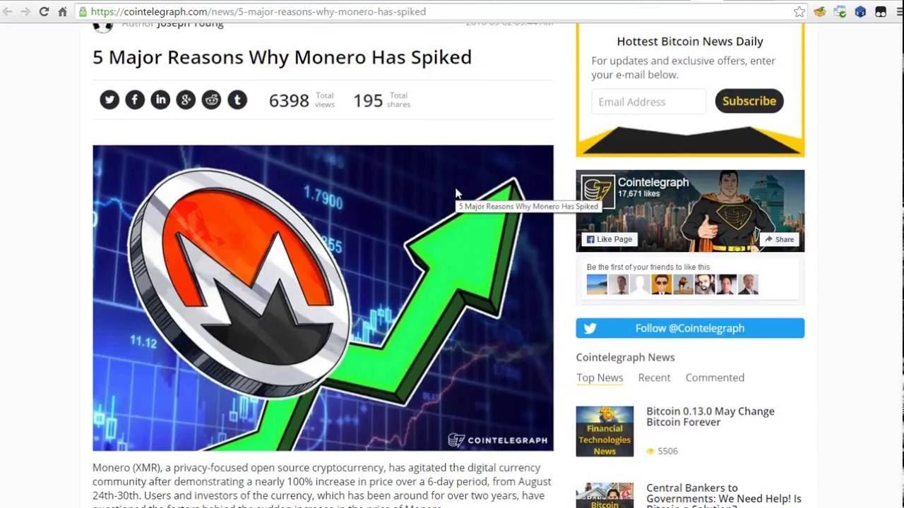 coingecko portfolio review