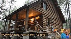 Rustic Cabin in the Woods- 1909 Wildcat Rd Forest Lakes, AZ 85931