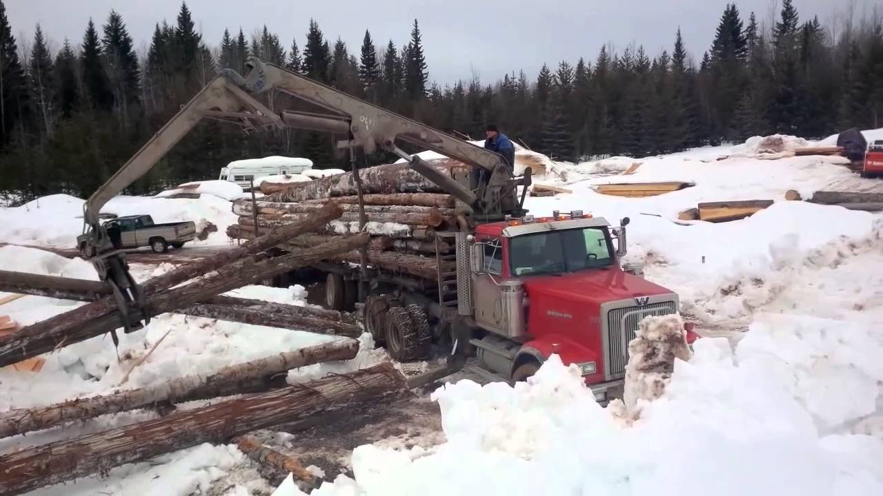 Three Log Load ~ Logs arriving mill with self load log truck of youtube